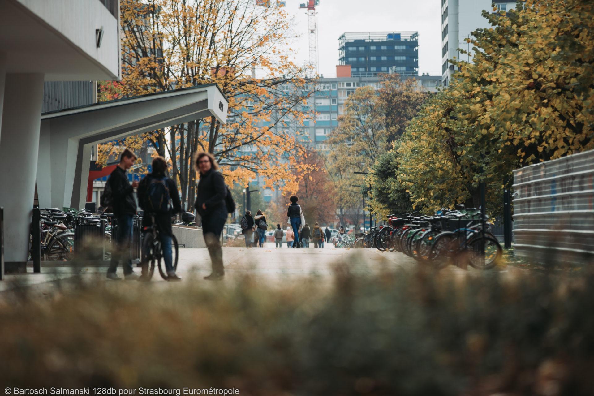 étudier à Strasbourg au campus Université
