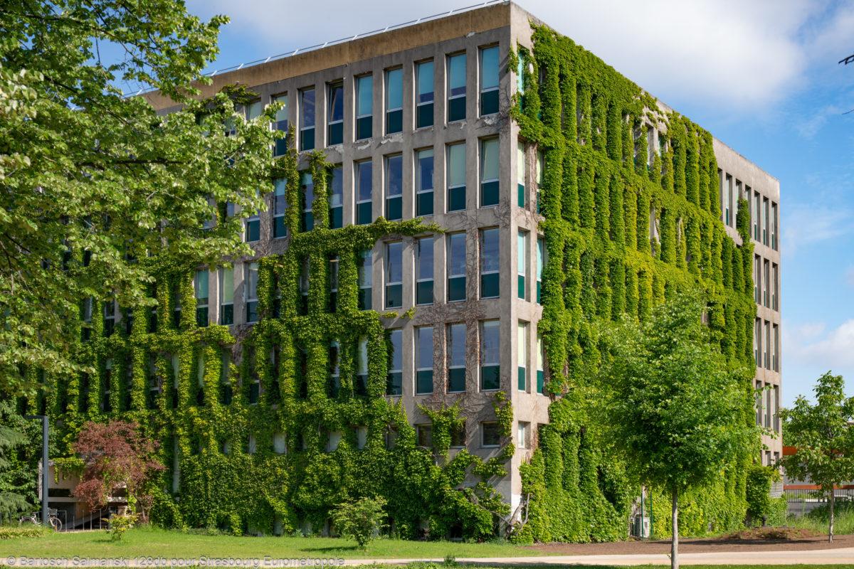 Université et ville verte à Strasbourg