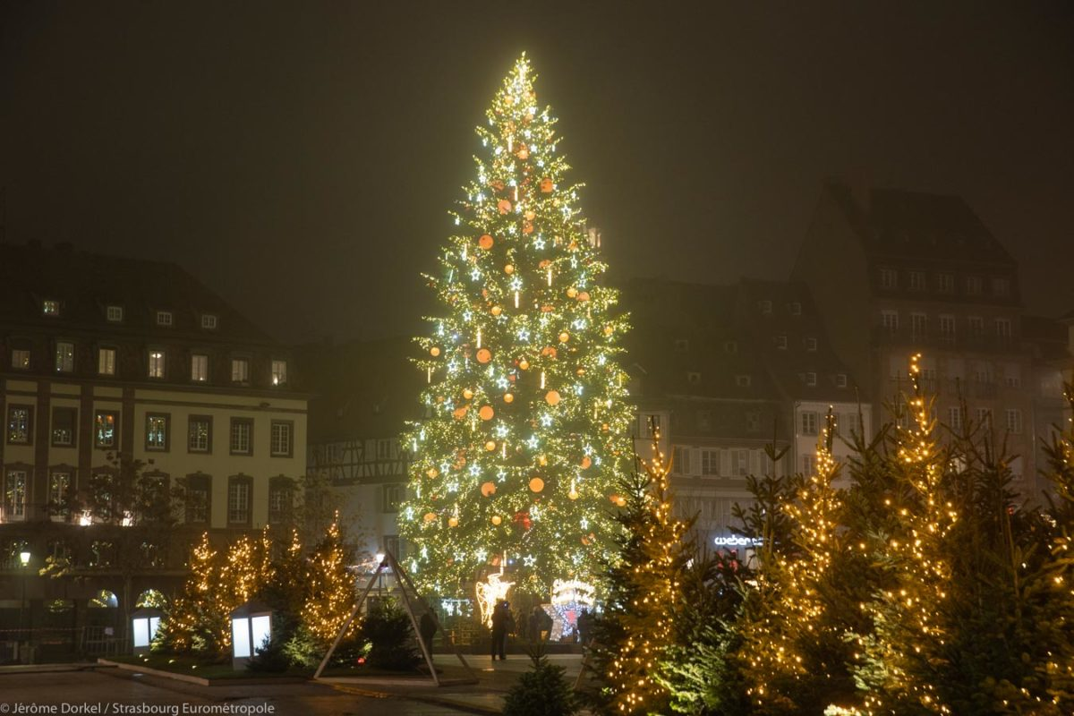 Grand sapin de Noël à Strasbourg