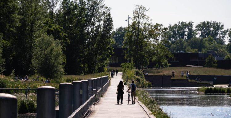 Promeneurs dans un parc
